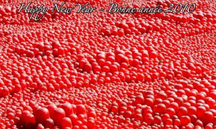 Bonne année 2010 – Happy New Year